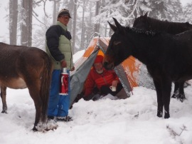 It snowed all night, collapsing our cook tent