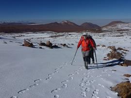 The desert hills are a wonderful rich reddish brown